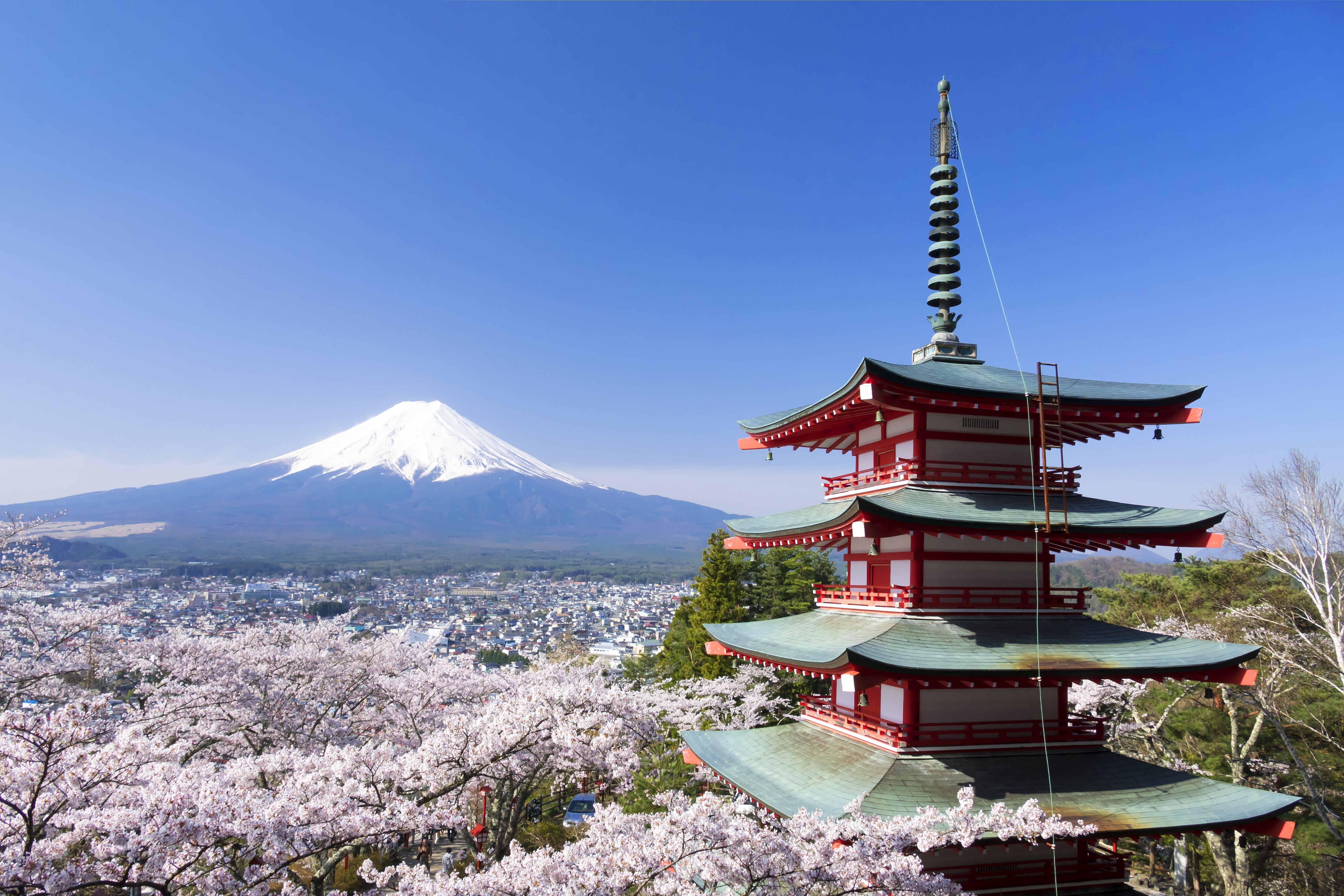 日本文化の特徴とは?独特の自然観や西洋文化との違いを解説 ...